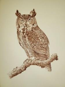 eagle-owl-1